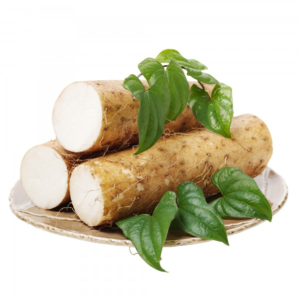Lichtyam® frisch (Dioscorea batatas)
